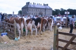 Kinross Agricultural Show